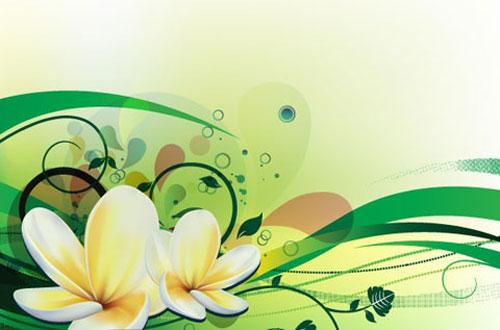 16.flower-vector1