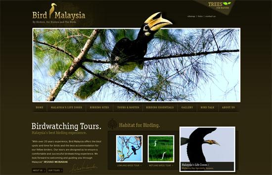 19-02_bird_malaysia