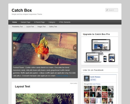 Catch-Box-Theme