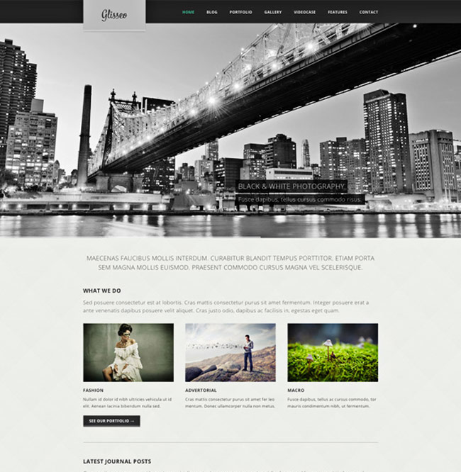 Glisseo Free Homepage PSD