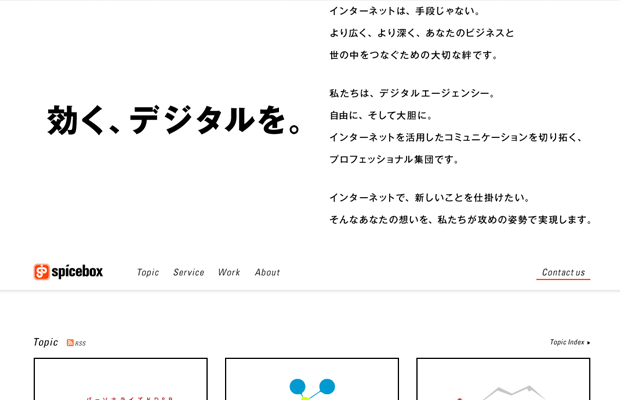 11-spicebox-japanese-media-company-website
