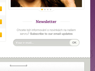 20-newsletter-website-signup-purple