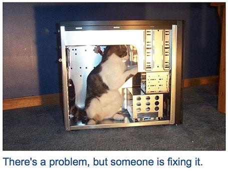 cool-404-errors-catswhocode