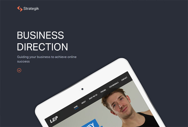 minimalist_web_designs_17strategik