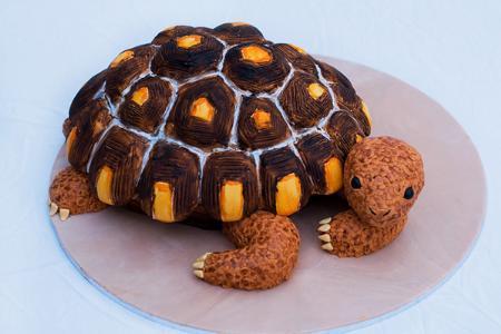 gorgeously-designed-cakes-071