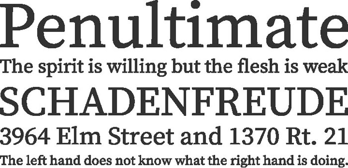 source-serif-pro