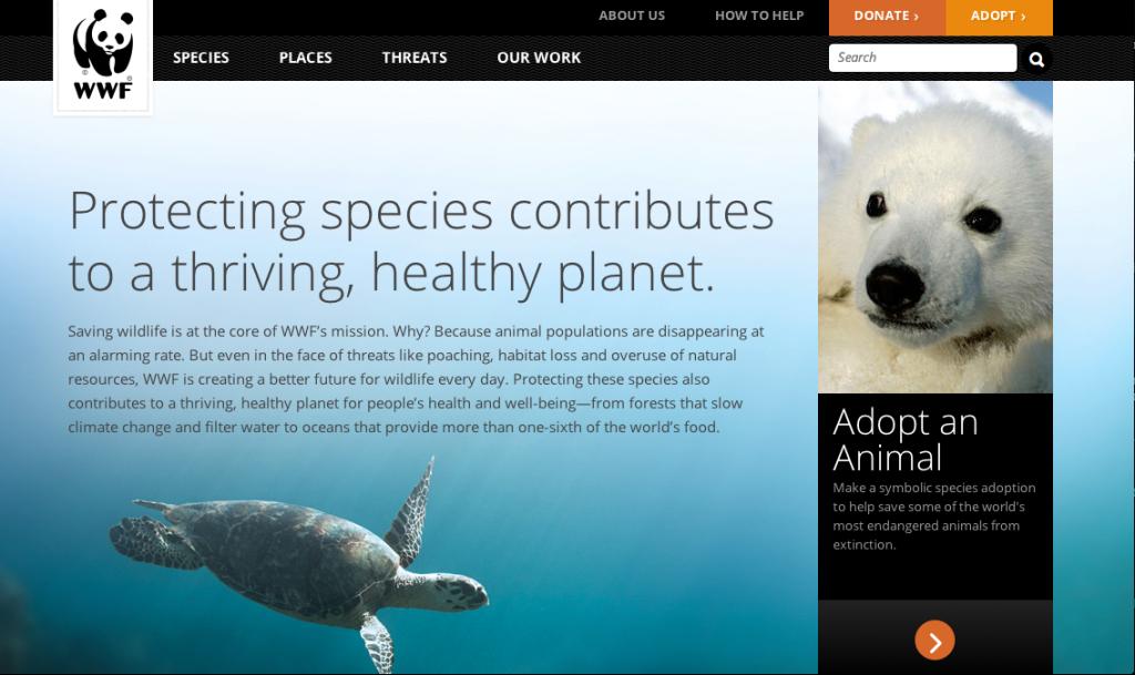 WWF-screenshot-1024x609