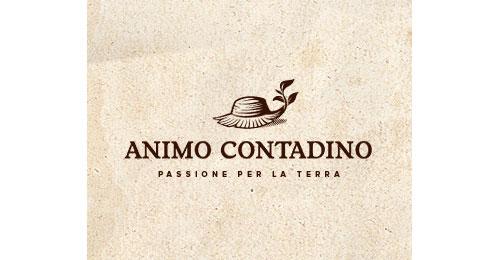 Animo-Contadino