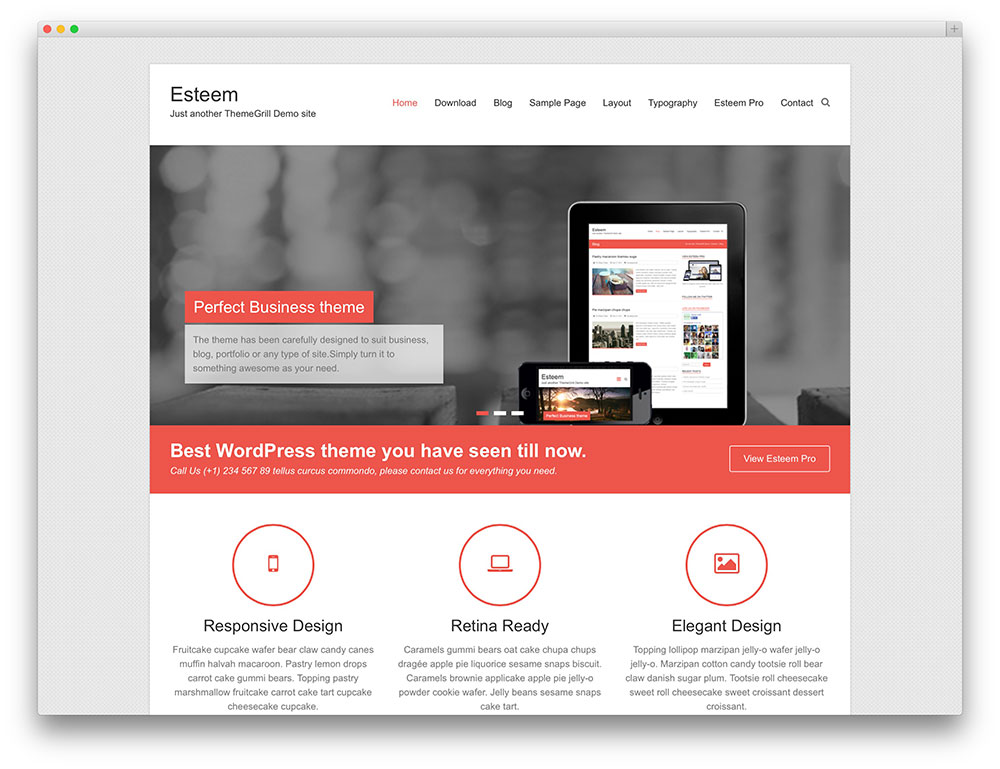 esteem-simple-wordpress-business-theme